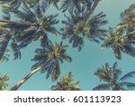 Tropical Trees Background...