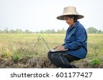 asian thai farmer using laptop... | Shutterstock . vector #601177427