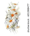 hand drawn watercolor tender... | Shutterstock . vector #601388477