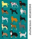 dog breeds set with breeds names | Shutterstock .eps vector #601603343