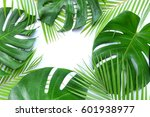 monstera and palm leaves | Shutterstock . vector #601938977