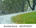 pouring rain in the summer ... | Shutterstock . vector #601943267