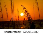 Orange Sunset Over The Ocean...