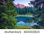 Mountain Lake Forest Reflectio...