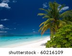 summertime on a tropical beach | Shutterstock . vector #60216109