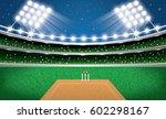 cricket stadium with neon... | Shutterstock . vector #602298167