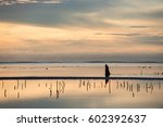sunrise at low tide | Shutterstock . vector #602392637