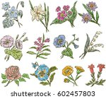 sketches of the different... | Shutterstock .eps vector #602457803