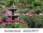 Stock photo the fountain in the international rose test garden located in portland oregon 602619077