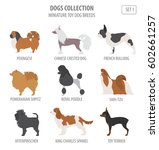 miniature toy dog breeds... | Shutterstock .eps vector #602661257