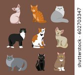 cat breed cute pet portrait... | Shutterstock .eps vector #602703347