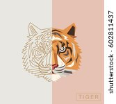 thin line and abstract tiger... | Shutterstock .eps vector #602811437