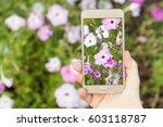 woman's hand  holding... | Shutterstock . vector #603118787