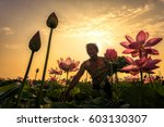 Thai Farmer Grow Lotus In The...