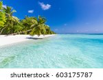 beautiful beach and tropical... | Shutterstock . vector #603175787
