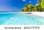 idyllic tropical beach... | Shutterstock . vector #603175793