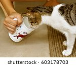 Woman Offering Milk In Her Cup...