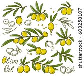 isolated olive branches set and ... | Shutterstock .eps vector #603258107