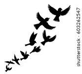 Stock vector bird flock vector flying birds silhouettes hand drawn songbirds 603262547