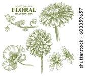 set of flowers sketches... | Shutterstock .eps vector #603359657