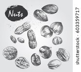 Hand Drawn Set Of Nuts Isolate...