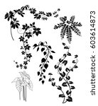 collection of leaves line... | Shutterstock .eps vector #603614873