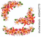wreath of colorful plumeria or... | Shutterstock . vector #603642773