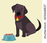 domestic labrador retriever... | Shutterstock .eps vector #603668837