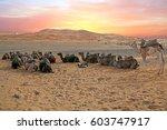 Camels In The Erg Shebbi Deser...