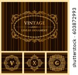 vintage retro frame and... | Shutterstock .eps vector #603872993