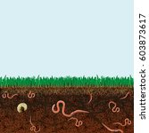ground cutaway with earthworms... | Shutterstock .eps vector #603873617