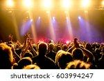 cheering crowd at a rock concert | Shutterstock . vector #603994247