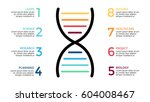 vector dna science infographic  ... | Shutterstock .eps vector #604008467