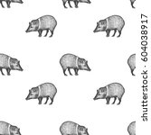 peccary. seamless pattern with... | Shutterstock .eps vector #604038917