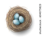 nest with spotted blue eggs on... | Shutterstock .eps vector #604075823