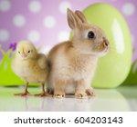 happy easter  chick in bunny | Shutterstock . vector #604203143