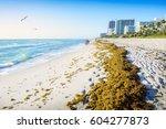 miami beach  located in miami ...   Shutterstock . vector #604277873