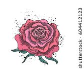 red rose hand drawn... | Shutterstock .eps vector #604412123