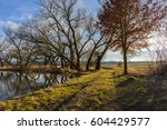 rural path by the small lake.... | Shutterstock . vector #604429577
