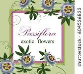passiflora exotic flowers....   Shutterstock .eps vector #604536833