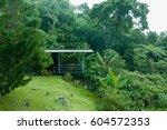 morning view at kundasang ... | Shutterstock . vector #604572353
