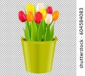 tulip in pot with gradient mesh ... | Shutterstock .eps vector #604584083