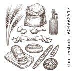 ingredients and bread set. hand ... | Shutterstock .eps vector #604662917