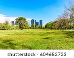 green grass and tree in the park | Shutterstock . vector #604682723