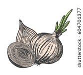 hand drawn vector illustration... | Shutterstock .eps vector #604701377