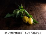 Yellow Tulips On Rustic Wood...
