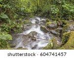 a swift flowing stream running...   Shutterstock . vector #604741457