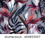 seamless tropical flower  plant ... | Shutterstock . vector #604853507