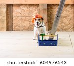 dog with toolbox in hard hat at ... | Shutterstock . vector #604976543
