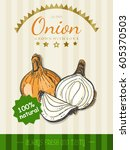 vector poster with a onion in a ... | Shutterstock .eps vector #605370503